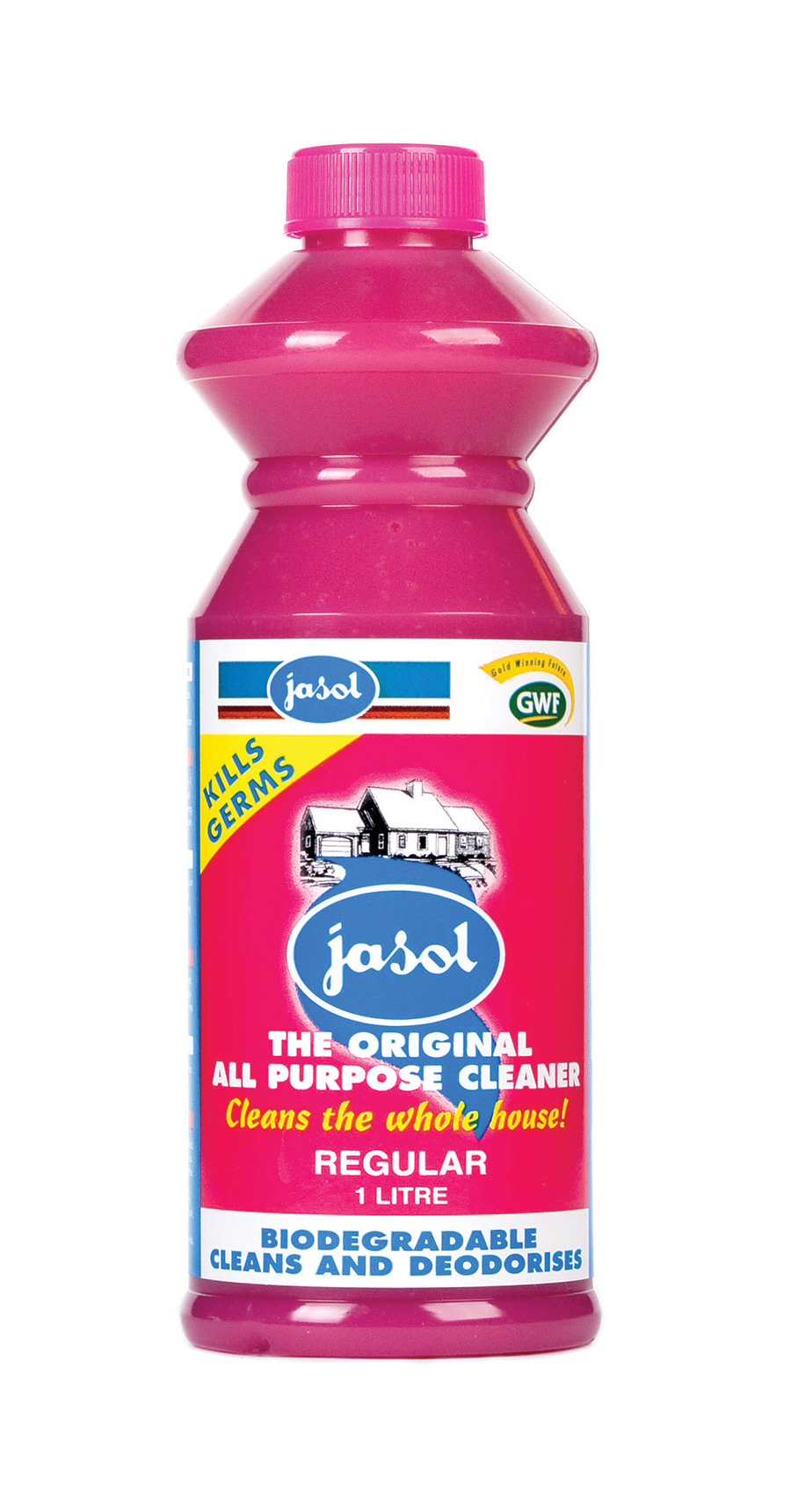 1000150—Regular-Cleaner—1L